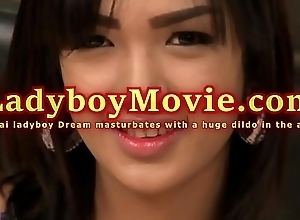 Ladyboy Dream Bonks Myself